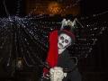 skeleton-leader-2013